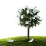 groen beleggen